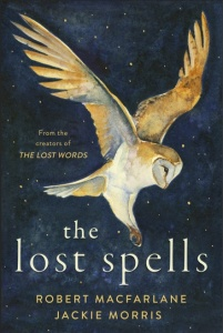 The Lost Spells book cover