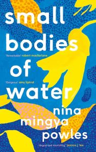 Small Bodies of Water book cover